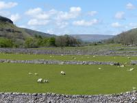Picture of Walk at Grassington to Buckden