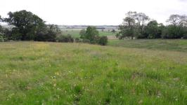 Picture of Walk at Sheriff Hutton